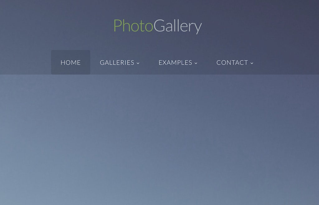 Photo Gallery Website for Modern Photographers
